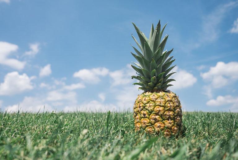 Ananas - kalorije, vitamini