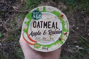 oatmeal apple raisin 1